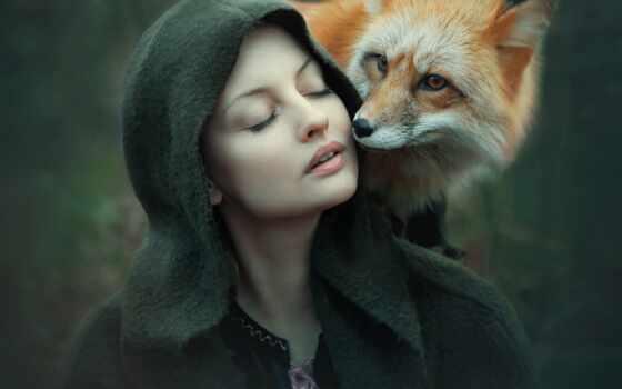 animal, дорога, фокс, perebezhat, твой, sign, totemnyi, встречать, заседание, тесто, который