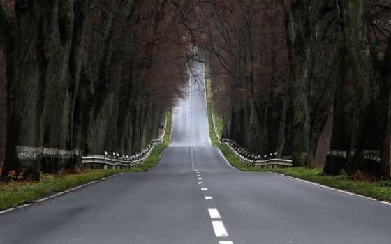 дорога, лес, дороги, trees, асфальт, природа, пейзажи -, леса, сквозь,