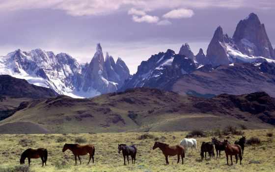 энди, горы, аргентина