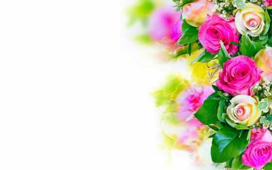 днем, рождения, поздравления, коллеге, поздравление, поздравить, коллегу, pozdravok,