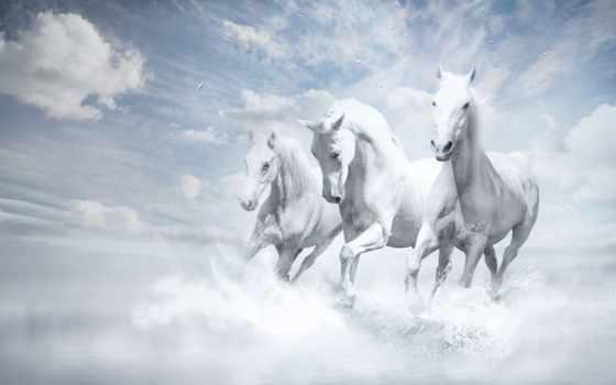 лошади, картинка, белые, река, три, кони, water, пазлы, oblaka, трио, art,