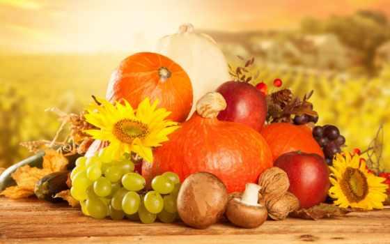 осень, фрукты, урожай, производить, яблоки, виноград, тыквы, груши, box, овощей, фруктов,