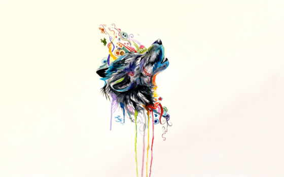 волк, вконтакте, крутой, howling, werewolf, zhivotnye, школьные, white, knowledge,