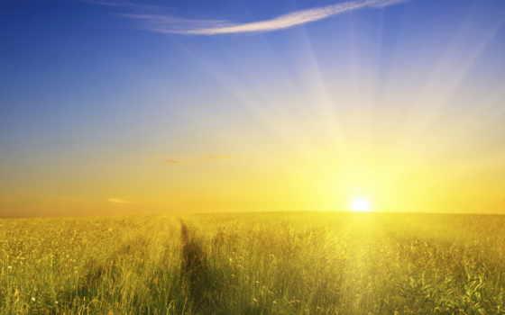 sun, поле, traces, свет, дорога, awakening,