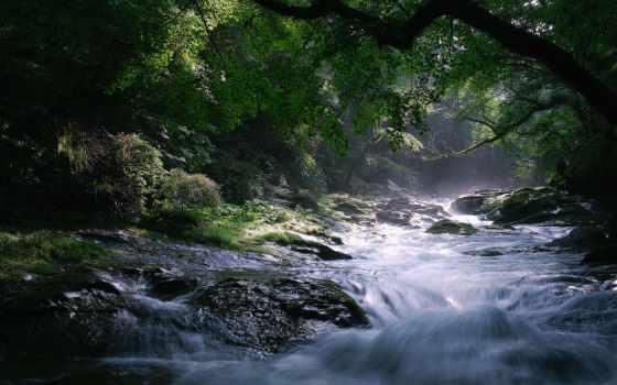 море, природа, качества, скалы, фотографий, пейзажи -, высокого, карпатах, lunch, природе,