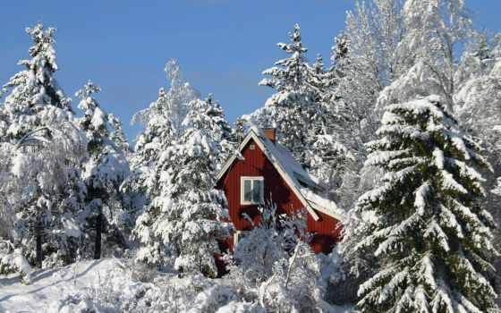 красивых, дом, лес, швеция, zima, швеции,