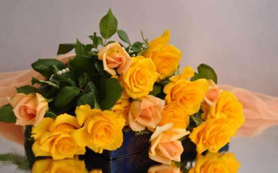 розы, желтые, букет, ткань, sweets, цветы,