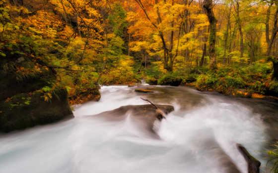 masaüstü, duvar, осень, desktop, hdresim, природа, hvga,
