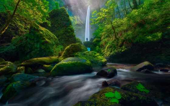 usa, водопад, камень, пасть, река, process, дерево, fore, мох