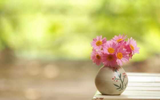 утро, хороший, cvety, ваза, цветы, букет, фон, new
