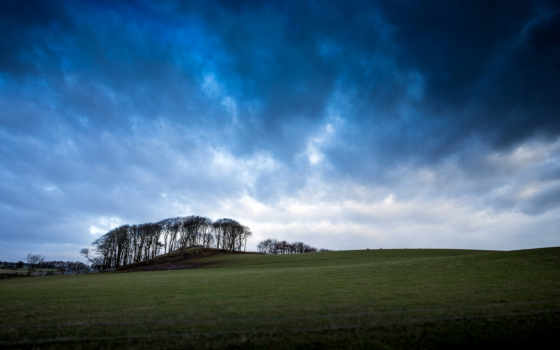 природа, ук, разные, пл, highland, clouds, trees, scotia, трава,