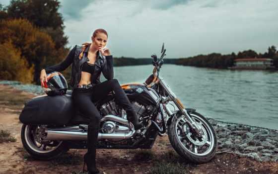 harley, davidson, девушка, мотоцикл, bike,