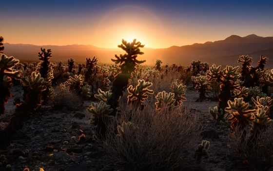 xanwow, lifestory, природа, ep, melodies, пустыня, elliptical, sun, mix,
