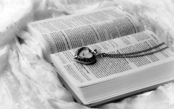 книга, страницы, watch