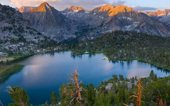 national, park, каньон, kings, секвойя, california, щит, david, usa,