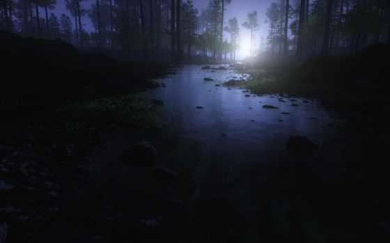 природа, water, trees, камни, sun, фоны, iphone, лес, мох,