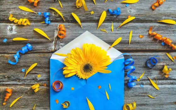 gerbera, цветы, креатив, конверт, осень, eilish, ноутбук, billie, гербера, lovely