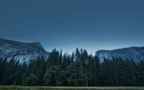 mountains, лес, yosemite, trees, usa, долина, national, park, california,