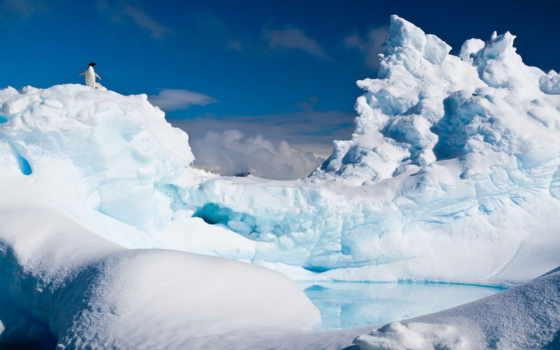 антарктида, антарктида, iceberg, снег, mac, android, custom, antarctic, ios,