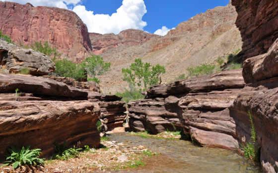 каньон, park, лань, заводь, national, grand, река, trail, изображение, bryce, природа,