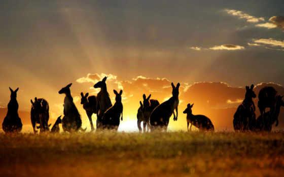 австралия, iphone, ipad, pizzot, австралию, гора, австралии, town,