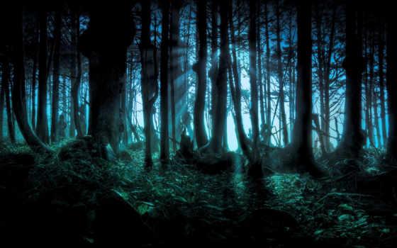 лес, dark, ужасный, darkness, trees, широкоформатные, mysterious, страшные,