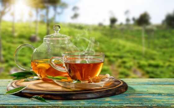 чая, магазин, point, цена, otzyv, доставка, любой, ukraine, pleasant, напиток