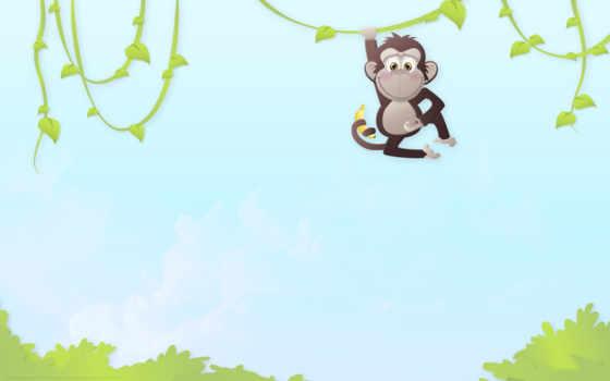 обезьяны, джунгли