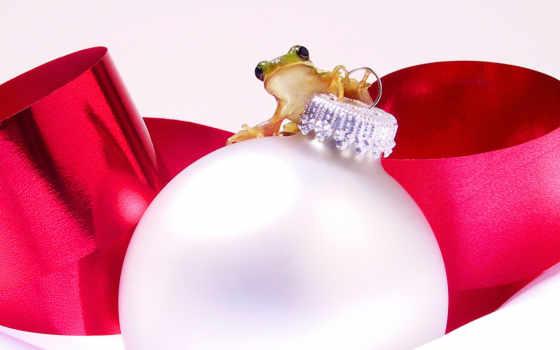 ornament, frog, christmas, игрушке, новогодней, лягушками,