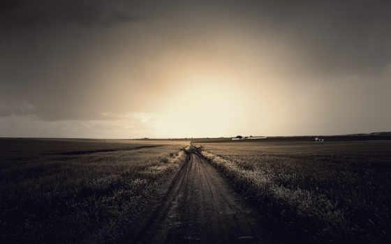 дорога, поле