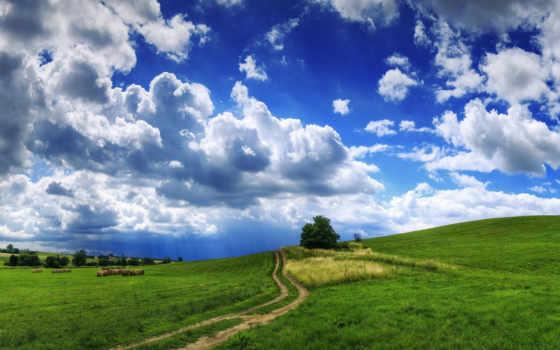 трава, облака, тучи