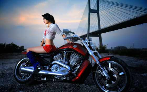девушка, мотоцикл, harley