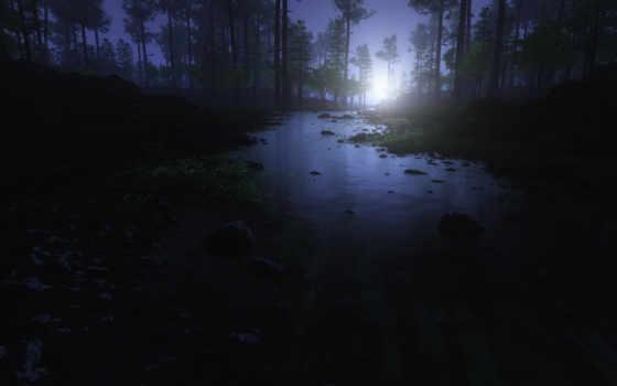 лес, ночь, moonlight, отражение, ручей, iphone, dark, природа,