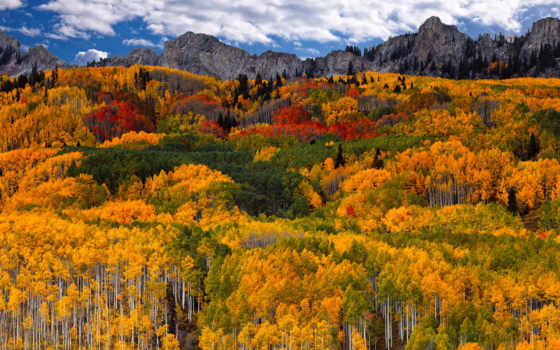 осень, горы, небо, лес, oblaka, краски,