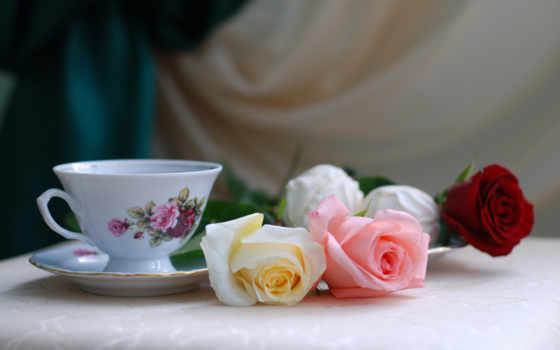 cvety, натюрморт, розы, чая, cup, ваза, праздник, клубника,