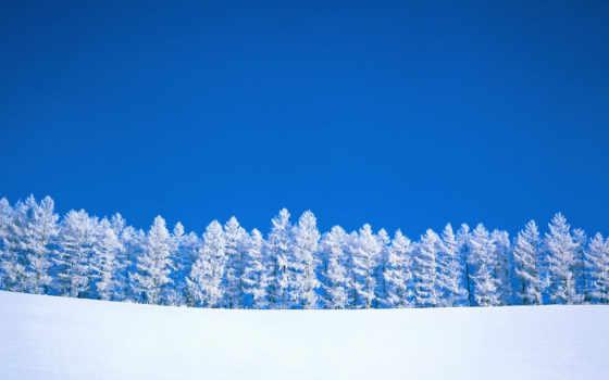 winter, пейзаж