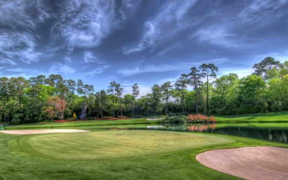 golf, cosmos, поле, рублей, сайт, природа, качество, количество,