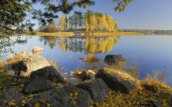 levelek, fák, sz, sárga, kövek, symphony, képek, beethoven, brüggen,