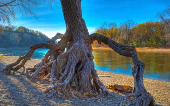 park, hidden, falls, mississippi, paul, река, санкт, minnesota, rooted,