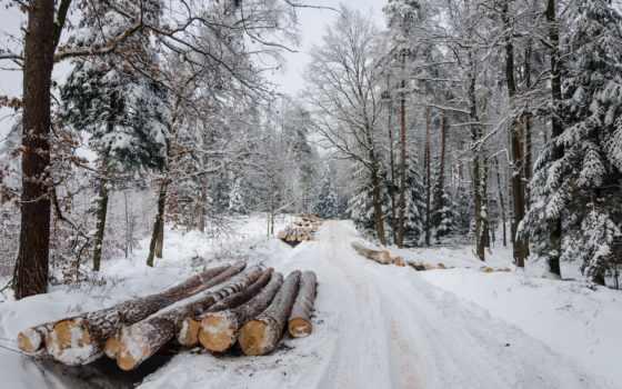 winter, дорога, landscape