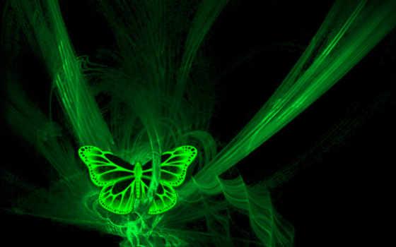 butterfly, green