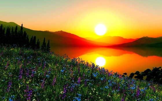 agradecimento, mensagens, лучи, спокойствие, мне, утреннего, восходящего, смена, яркие, осветили, dai,