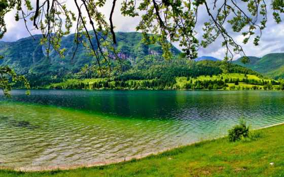 summer, озеро, зелёный, slovenia, bohinj, гора, trees,