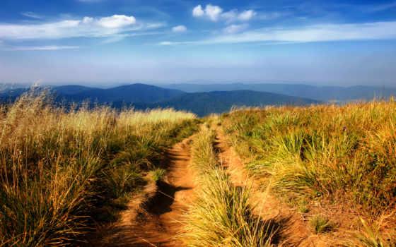 trail, горная, поле, сквозь,