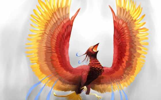 phoenix, птица, тепло, искусство,