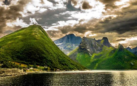 торрент, разное, пейзажи -, горы, winter, хвоя, елка, снег, природа, город,