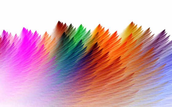 colorful, feathers
