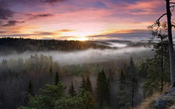 финляндия, national, park