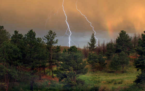 небо, lightning, лесу