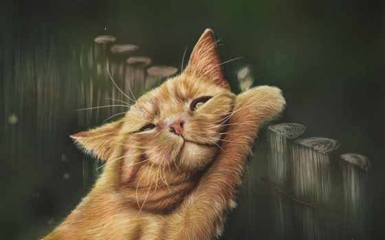 кошки, рисованные, red, cats, коты, кот, zhivotnye, забор, картинка, color,
